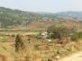 Tur mellem rismarkerne - Okt 2011